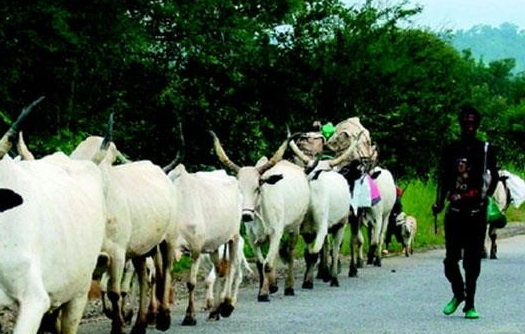 fulani attack zamfara