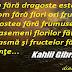Viziunea - Povestire de Kahlil Gibran