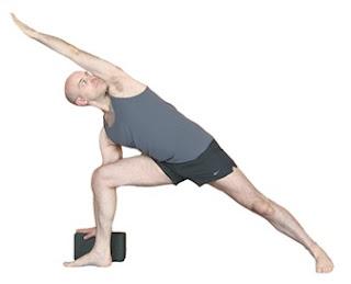 themostdangerous nina's tips for learning sanskrit pose