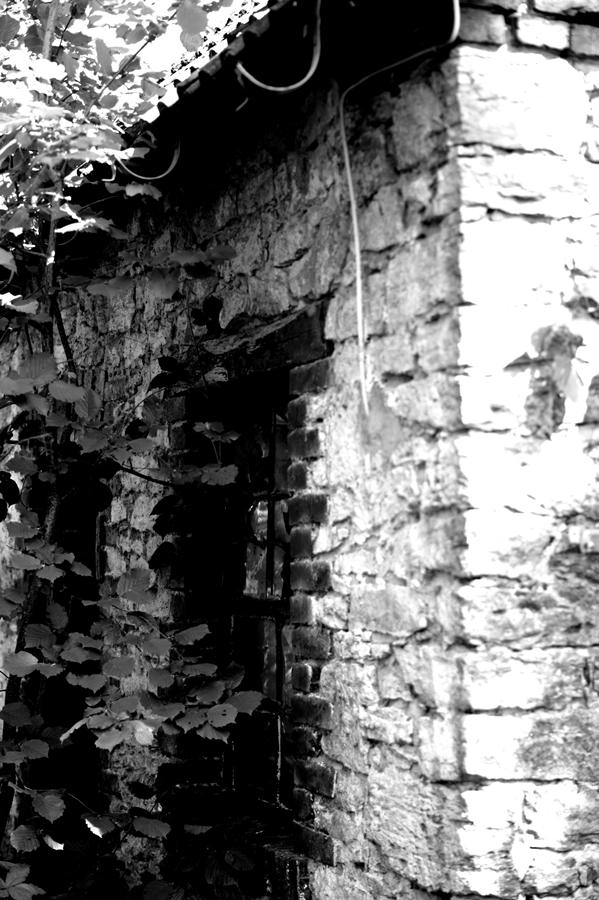 Blog + Fotografie by it's me! | fim.works | SchwarzWeissBlick No 17 | verlassenes Gehöft | Lost Place | Mauerwerk