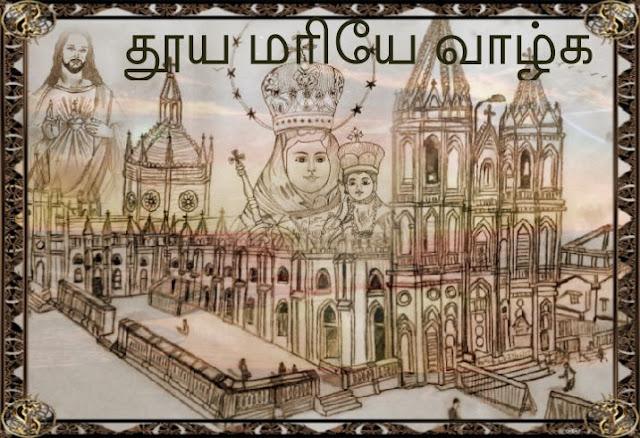 PENCIL DRAWING - velankanni church