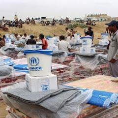 صراع الشرعية والأنصار على المساعدات الإنسانية فساد بمليارات الدولارات لقتل اليمنيين جوعاً