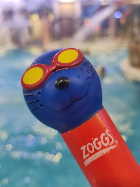 Zoggs dive toys #ZoggsAtCoralReef
