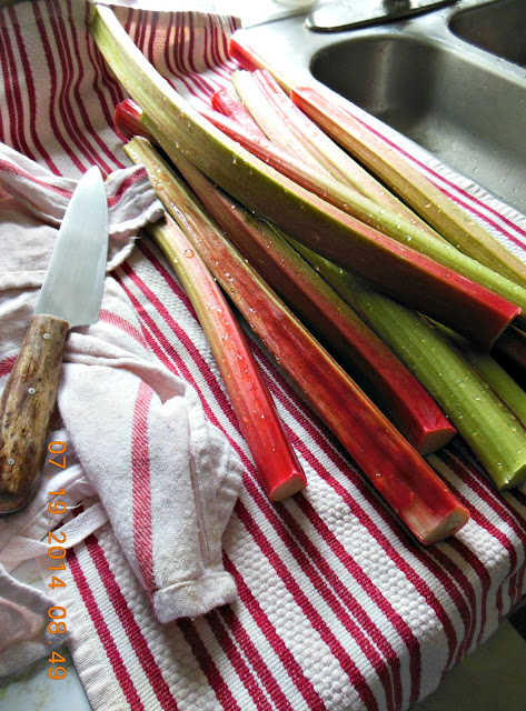 How to Poached Rhubarb. Easy hands-free double boiler method!