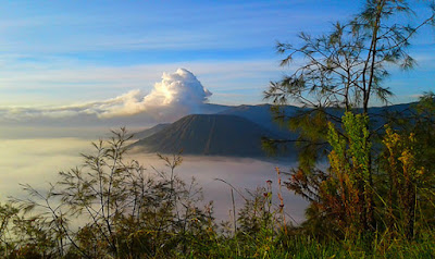 Ijen Bromo From surabaya, Bromo Ijen from Bali, Ijen Bromo From Bali, Bromo Tour from Surabaya, Ijen Bromo From Banyuwangi, Ijen Crater and Mount Bromo.