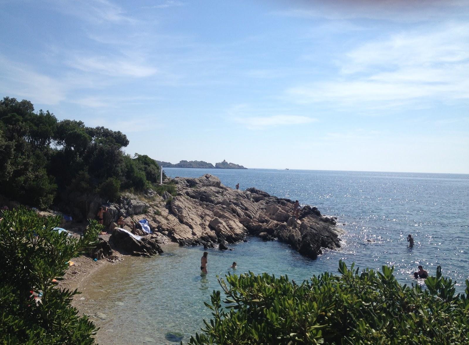 Picture of Dubrovnik scenery Croatia