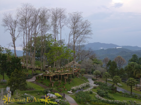 A view from the Doi Tung Royal Villa