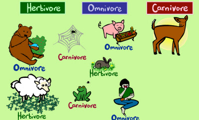 english2kids [licensed for non-commercial use only] / ANIMALS GAMES