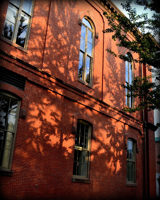 Phillips Library, Peabody Essex Museum, Salem, Massachusetts, shadows