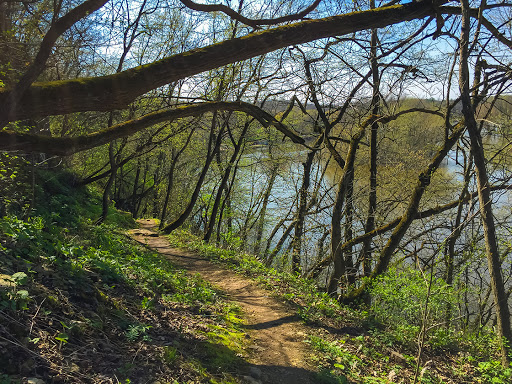 Views of the Rock River from the Devils Staircase Segment of the Ice Age Trail