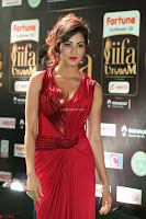 Videesha in Spicy Floor Length Red Sleeveless Gown at IIFA Utsavam Awards 2017  Day 2  Exclusive 38.JPG