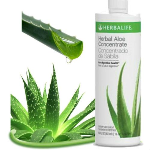 Herbal Aloe Concentrate Herbalife, Manfaat Lidah Buaya Ada ...
