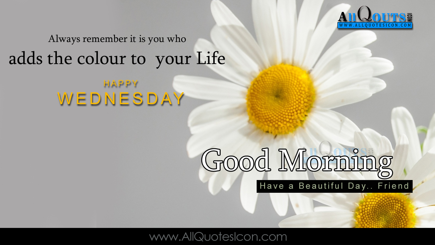 happy wednesday images best english good morning quotes