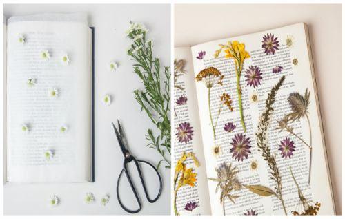 DIY κάδρα με αποξηραμένα λουλούδια