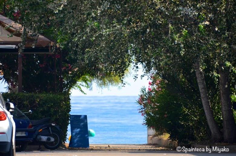 Dénia 囲まれる木々から見える地中海のビーチ