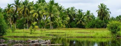 http://www.icd-afrique.org/voyages/un-autre-benin-voyage-dans-lancien-dahomey/