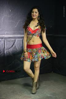 Actress Richa Panai Latest Stills in Rakshaka Bhatudu Telugu Movie  0012.JPG