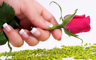 10954602 881590048549098 187645176 o 1200x750 - Top #15 Happy Rose Day Pictures - Rose Day Pics