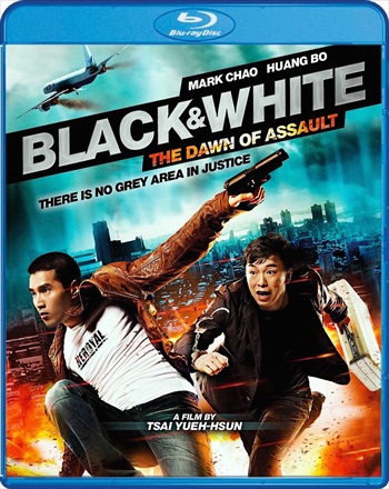 Black & White The Dawn Of Assault 2012 Dual Audio Hindi 480p BluRay 450MB