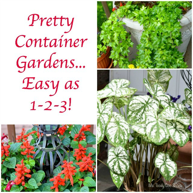 Pretty Container Gardens...Easy as 1-2-3! | Ms. Toody Goo Shoes