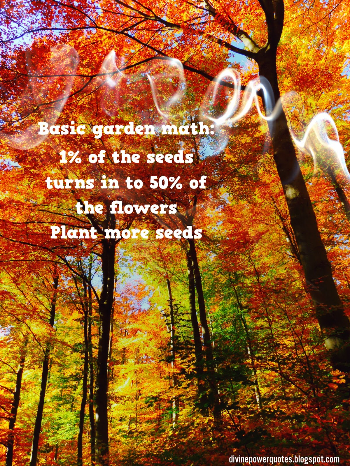 Divine Power Quotes Pant More Seeds Nature Quote