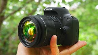 Best dslr cameras 2019