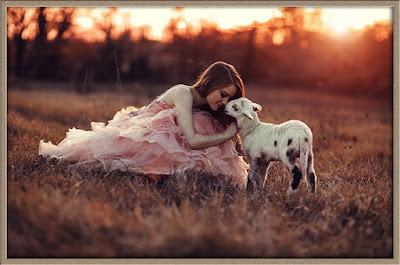Сексуальные желания по типу йони Овца, Крыса и Корова