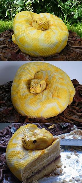 Lustige Tortenbilder Schlange