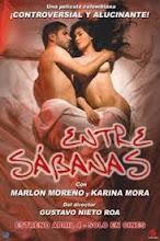 Entre sábanas (2008) [Latino]