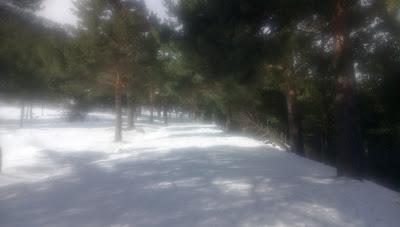 La barranca de Navacerrada nevada - con el grpo de senderismo sscapadillas.com