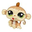 Littlest Pet Shop Petriplets Monkey (#1551) Pet