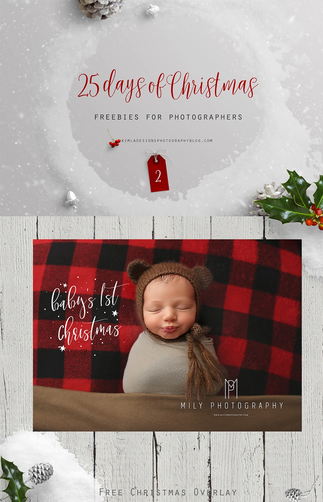 Day 2 of 25 Days of Christmas Freebies for Photographers