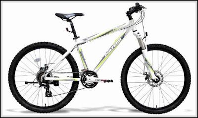 Harga Jual Sepeda Gunung Polygon Premier 4