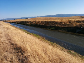 Looking west along the channel where Stevens Creek meets San Francisco Bay, Mountain View, California
