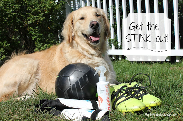 keep your dog and soccer cleats smelling fresh with odor neutralizing spray from isle of dogs