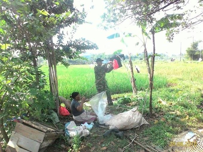 Koramil 04/Bojonggede Targetkan Panen Padi Meningkat