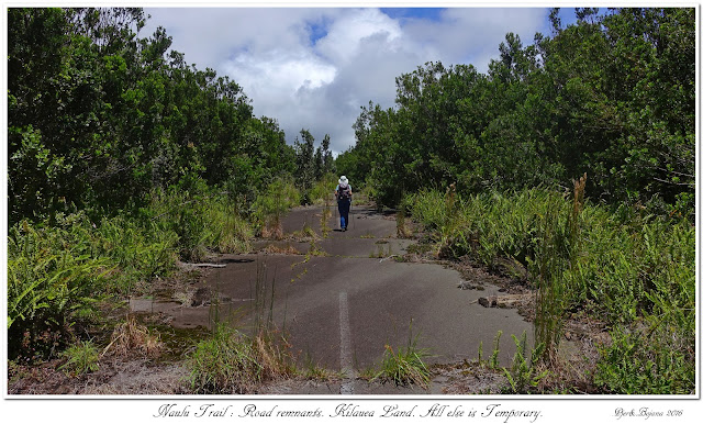 Naulu Trail: Road remnants. Kilauea Land. All else is Temporary.