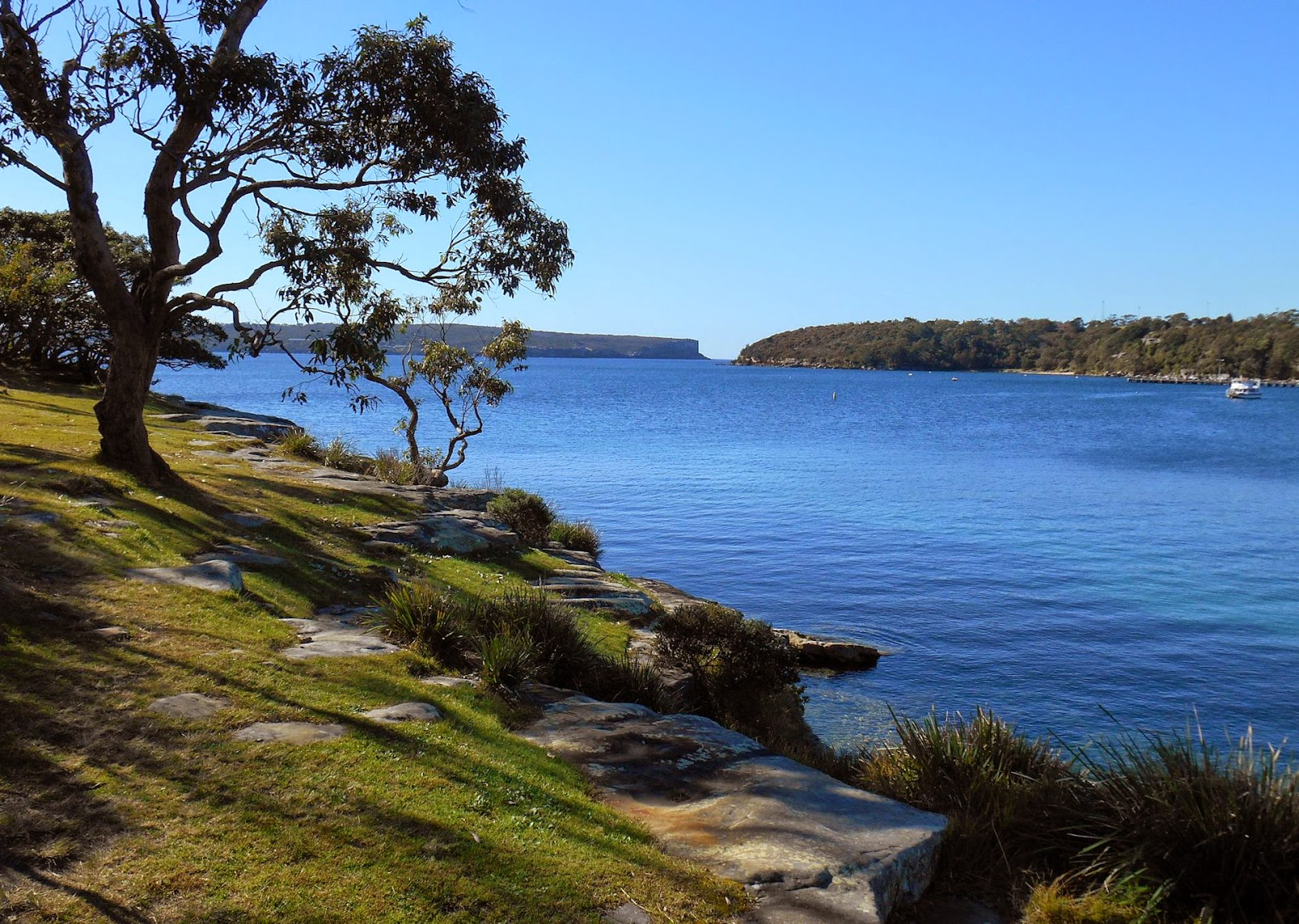 Rocky Point Island Balmoral Our Walks