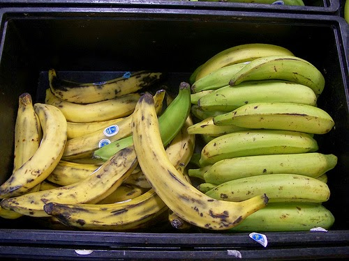 Plantains may look like bananas but they are longer, have thicker skin, and are starchier.
