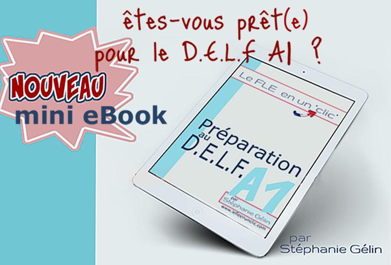 eBook préparation au delf A1, exercices, le fle en un clic, DELF A1