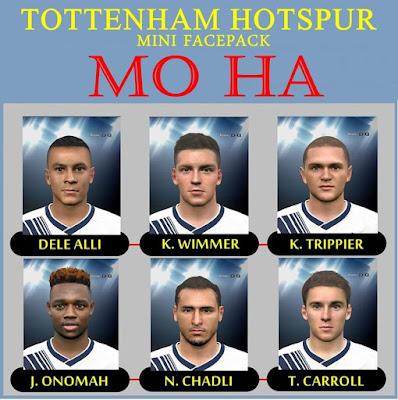 Tottenham Hotspur Mini Facepack