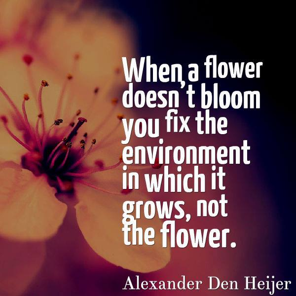 127 Best Flower Quotes Images Beautiful Words Messages Thoughts