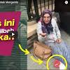 Tercyduk Merusak Citra Islam! Pura-pura Jadi Muslim Mengemis di Eropa, Dites Baca Syahadat Gak Bisa
