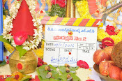 Mahesh Babu New Movie Opening-thumbnail-1