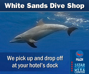 White Sands Dive Shop