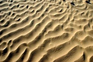 الآلم الرمال
