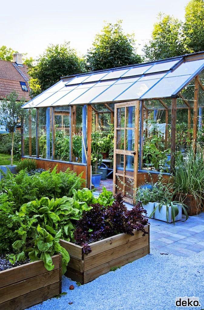 Creative Ideas: Backyard Veggie Gardens!