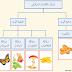 الصف الخامس - الفصل الدراسي الأول - تصنيف الكائنات الحية.