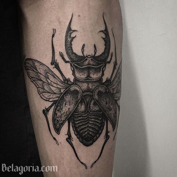 tatuajes de escarabajos