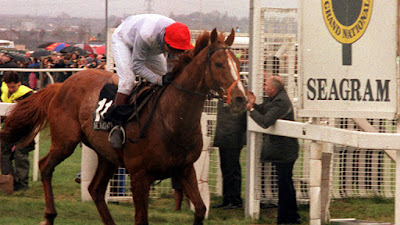 Seagram Grand National Winner 1991